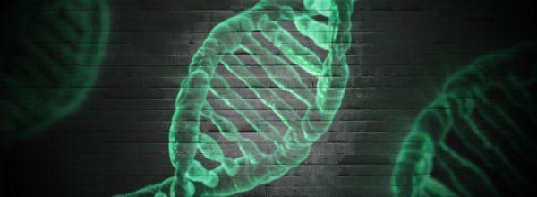 """Dokonano pierwszej """"chemicznej operacji"""" ludzkiego embrionu"""