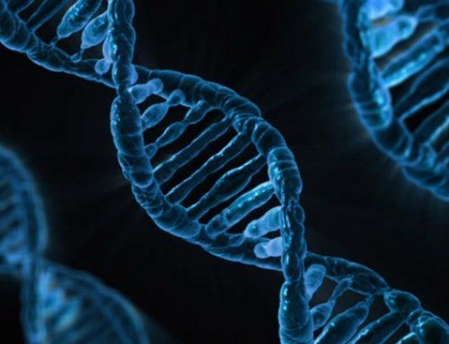 W Chinach urodziły się pierwsze dzieci o zmodyfikowanych genach?