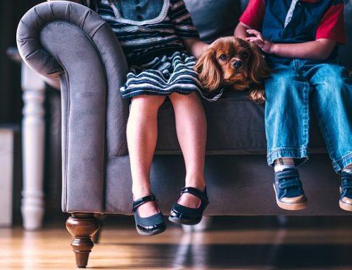 W USA lawinowo rośnie liczba placówek prowadzących tzw. terapię zmiany płci u dzieci
