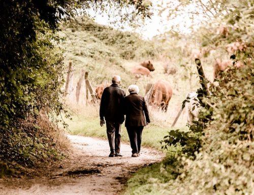 Zapowiedź zwiększenia kompleksowej opieki nad osobami starszymi